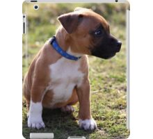 Staffordshire Bull-Terrier Puppy iPad Case/Skin