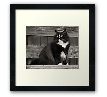 Zoe sitting Framed Print