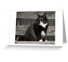 Zoe sitting Greeting Card