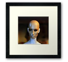The Cherry 2000 Project - SN. WM2154 Framed Print