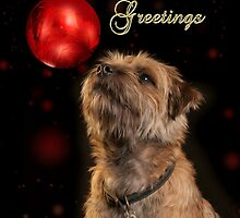 Season's Greetings With Border Terrier Dog And Bauble by Moonlake