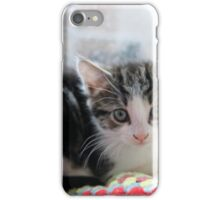 How Much is the Kitty in the Window iPhone Case/Skin