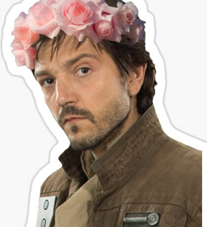 captain cassian andor Sticker