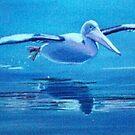 Pelican Flying, Lake Macquarie, NSW, Australia by Carole Elliott