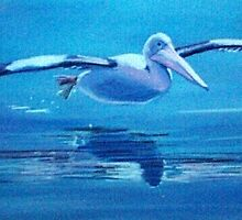 Pelican Flying, Lake Macquarie, NSW, Australia by Carole Elliott