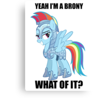 I'm a brony what of it  Canvas Print