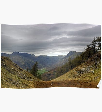 Langdale Views Poster