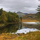 Blea Tarn Revisited by Jamie  Green