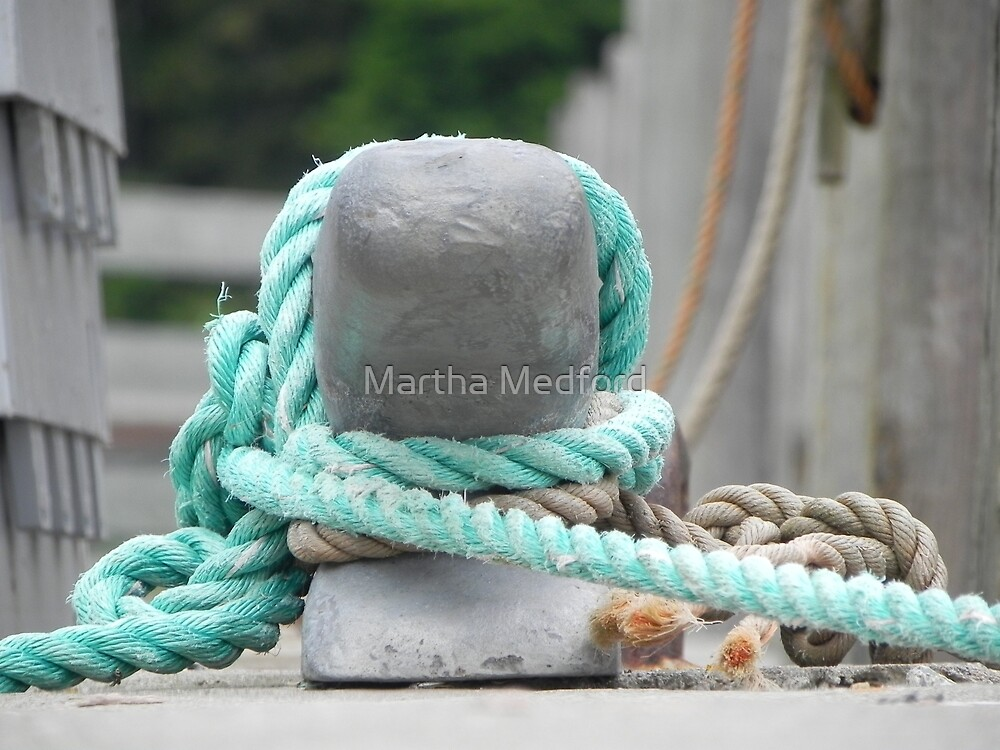 All Tied Up by Martha Medford