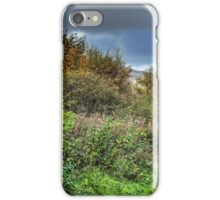 The Devon Way iPhone Case/Skin