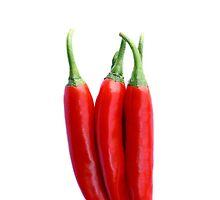 Chili Pepper by dkaranouh