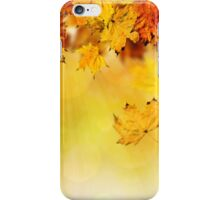 Fall maple leaves 3 iPhone Case/Skin