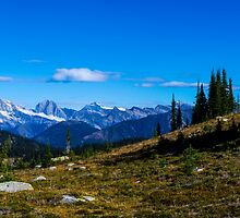 Summer mountain View  by RevelstokeImage