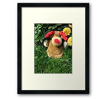 Pooch (our doorstop) in Our Garden in Romania Framed Print