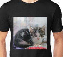 How Much is the Kitty in the Window Unisex T-Shirt