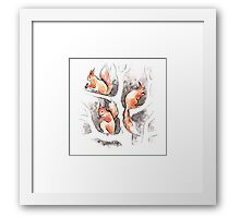 Squirrels, forest animals, watercolor & ink sketch Framed Print