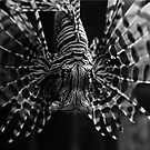 Lionfish by artddicted