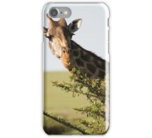 Well, Hello There! iPhone Case/Skin