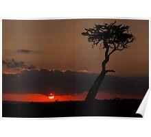 Mara Sunset Poster