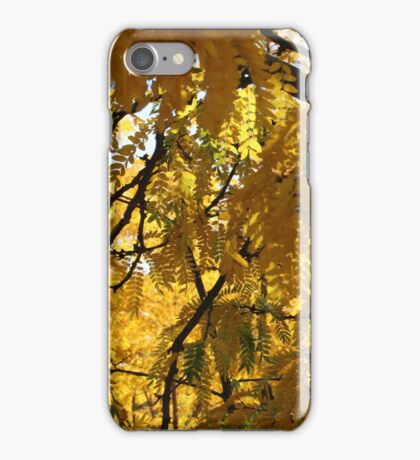 Close up of yellow trees iPhone Case/Skin