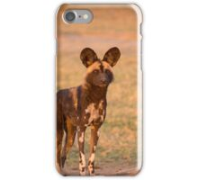 African Wild Dog iPhone Case/Skin