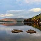 Quiet Autumn Morning - Bear Pond by T.J. Martin
