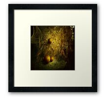 Fantasy Pumpkin Patch Framed Print