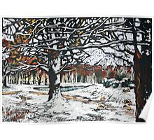 Winter landscape with oak trees in a park Poster