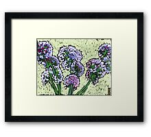 Onion flowers bouquet  Framed Print