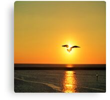 Icarus to the Sun Canvas Print