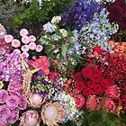 Beautiful flowers I captured  by Directioner97