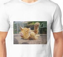 Ginger cat playing on patio Unisex T-Shirt