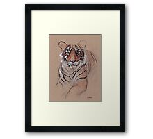 UNFINISHED BUSINESS - Original Tiger Drawing - Mixed Media (acrylic paint & pencil) Framed Print