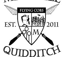 Mitchell Quidditch Design 2 by Isaac Novak