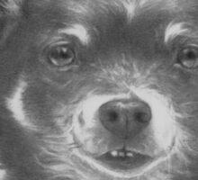 A Dog Named Boo Sticker