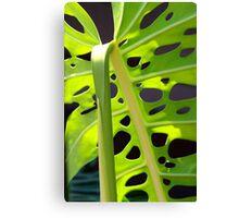 Swiss Leaf - Macro Photography Canvas Print