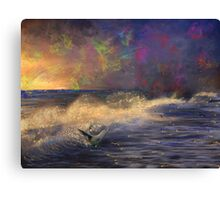 Evening Fun for a Sea Lion Canvas Print