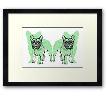 Theo the Frenchie Framed Print