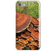 Brown Saucers iPhone Case/Skin