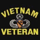 First Cavalry Vietnam Veteran by Walter Colvin