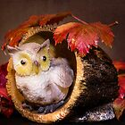 Autumnal Owl still life  by Martina Fagan