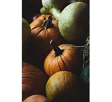 Autumn Harvest Photographic Print