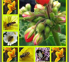 Biology Lesson - The Buds And  The Bees Collage by BlueMoonRose