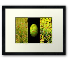 ***Eye Poppy-ing Framed Print