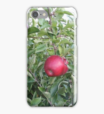 Red Apples iPhone Case/Skin