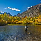 Near Silver Lake, CA by Zane Paxton
