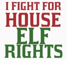 I FIGHT FOR HOUSE ELF RIGHTS Kids Tee