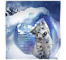 Snow Leopard - Heart Warmer Poster