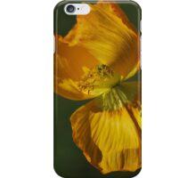 Yellow Poppy By Lorraine McCarthy iPhone Case/Skin