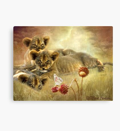 Africa - Innocence Canvas Print